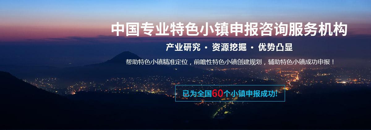中国特色小镇发展战略规划专题