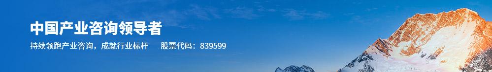 中国产业咨询领导者(股票代码:839599)